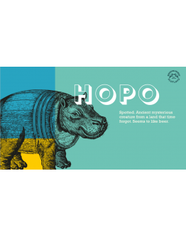 Hopo 2 Rivers IPA ABV 4,6% - 330ml